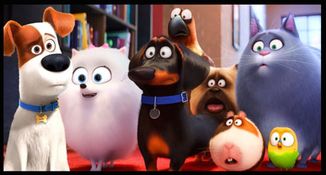 Interview Director Chris Renaud On The Secret Life Of Pets 2 Animation Scoop